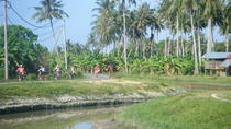 Half-Day Penang Countryside Cycling Tour, Penang