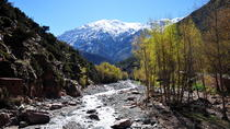 Ourika Valley and Atlas Mountain Day Tour from Marrakech, Marrakech, Private Sightseeing Tours