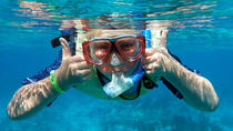 Small Group Premium Snorkel-Sunset Combo, Key West, Snorkeling