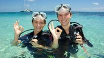 Michaelmas Cay Dive and Snorkel Cruise from Palm Cove, Palm Cove, Scuba & Snorkelling