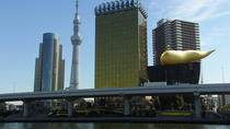 Half Day Sightseeing and Shopping Tour in Tokyo, Tokyo, Bus & Minivan Tours