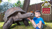 Tampa's Lowry Park Zoo Admission, Tampa, Attraction Tickets