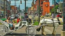 20 Minute Private Narrated Tour of Downtown Nashville, Nashville, Horse Carriage Rides