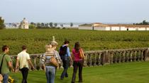 Bordeaux Vineyards Wine Tasting Half-Day Trip, Bordeaux