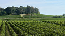 Saint-Emilion Day Trip from Bordeaux: Château Wine Tastings and Lunch, Bordeaux, Day Trips