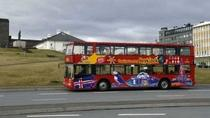 Reykjavik City Hop-on Hop-off Tour, Reykjavik, Hop-on Hop-off Tours