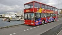 Reykjavik Shore Excursion: Reykjavik Hop-on Hop-off Tour, Reykjavik, Ports of Call Tours