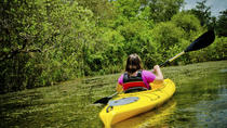 Kayaking on Broad River with Wine Tasting, Atlanta