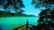 Bosque tropical Daintree, Cape Tribulation y el Rainforest Habitat Wildlife Sanctuary en un ...