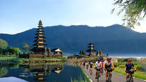 Full Day Bali Sightseeing Tour with Bike Ride, Bali, Private Day Trips