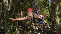 Kona's Only Canopy Zipline, Big Island of Hawaii, Ziplines