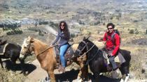 Overnight Tour: Colca Canyon Including Horse Riding from Arequipa, Arequipa, Day Trips