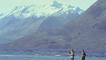 Full Day Fishing Tour from Christchurch, Christchurch