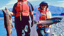 Half Day Fishing Tour from Christchurch, Christchurch, Fishing Charters & Tours
