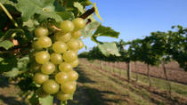 Waipara Wine Trail Tour from Christchurch, Christchurch, Day Trips