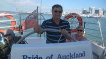 Auckland Harbour Coffee Cruise, Auckland