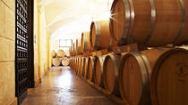 Amarone Wine Tour in the Cellars of a Roman Villa with Lunch, Verona, Wine Tasting & Winery Tours