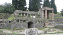 Naples Shore Excursion: Pompeii Half-day Trip from Naples, Naples, Day Trips