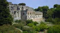 Private Tour: Pompeii Half-Day Trip from Naples, Naples, Day Trips