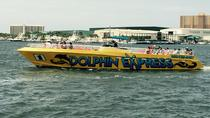 Dolphin Adventure Tour, Panama City Beach, Dolphin & Whale Watching