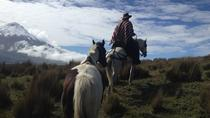 5-Day Adventure in The Andes and Amazon, Quito, Multi-day Tours
