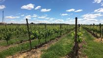 Aleksander Estate Winery Tour and Tasting, Ontario, Wine Tasting & Winery Tours