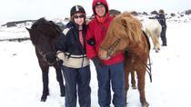Viking Horse-Riding Tour and Blue Lagoon from Reykjavik, Reykjavik, Day Trips
