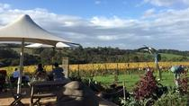 Mornington Peninsula Wine and Cheese Tasting Day Trip from Melbourne, Melbourne, Day Trips