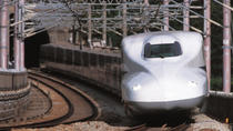 21-Day Japan Rail Pass Including Shipping Fee, Tokyo, Rail Services