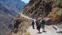 3-Day Backpacker Colca Canyon Trek from Arequipa, Arequipa, Overnight Tours