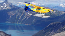 Whistler to Victoria Scenic Flight, Whistler, Air Tours