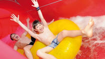 Aquabasilea Water Park EntranceTicket with Hotel Pick-Up and Drop-Off and Hamam Included, Basel, ...