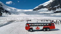 Columbia Icefield Tour from Banff, Banff, Day Trips