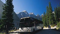 Columbia Icefield Tour from Calgary, Calgary, Day Trips