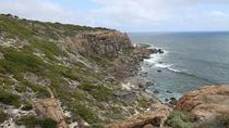 Margaret River Scenic Nature and Wine Tour Including Hamelin Bay, Margaret River, Day Trips