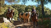 Horse Riding Tour of Grazalema Natural Park in Cadiz, Cádiz, Horseback Riding