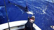 Kona Sport-Fishing Share Charter, Big Island of Hawaii, Fishing Charters & Tours