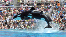 SeaWorld San Diego Transportation and Admission, San Diego, Theme Park Tickets & Tours