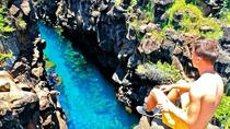 Half-Day Santa Cruz Island Tour Galapagos Islands, Galapagos Islands, Half-day Tours