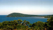 Cape Tribulation, Daintree River Cruise and Bloomfield Track Small Group Tour, Cairns & the ...