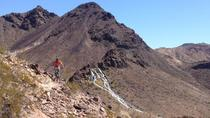 Bootleg Canyon Singletrack Tour, Las Vegas, Bike & Mountain Bike Tours
