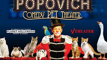 Popovich Comedy Pet Theater en el Planet Hollywood Resort and Casino, Las Vegas, Family-friendly ...