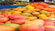 2-Day Markets Tour from Quito: Otavalo and Cotacachi, Quito, Day Trips
