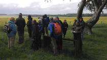 Full-day Walking Tour of the Stonehenge Ceremonial Landscape, South West England, Walking Tours
