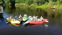 Family Kayak Tour, Jacksonville, Kayaking & Canoeing