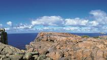 4-Day Tour from Perth Including Margaret River, Valley of the Giants Tree Top Walk, Albany and Wave ...