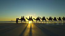 Afternoon Broome Town Tour Including Cable Beach with Optional Sunset Camel Ride, Broome