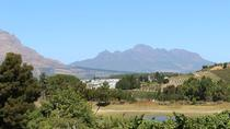 Small-Group Beer and Wine Tour in Paarl and Stellenbosch from Cape Town, Cape Town, Beer & Brewery...