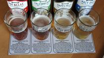 Small-Group Cape Town Craft Beer Tour, Cape Town, Beer & Brewery Tours