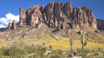 Half-Day Hummer Adventure through Tonto National Forest, Phoenix, 4WD, ATV & Off-Road Tours